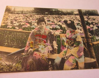 Vintage Japanese Photo-Postcard of Two Geishas Sitting in Flower Field