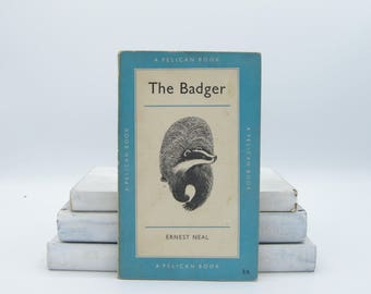The Badger by Ernest Neal (Vintage, Pelican, Nature)