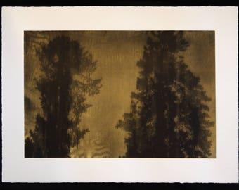 Kalga Pines Silkscreen art print