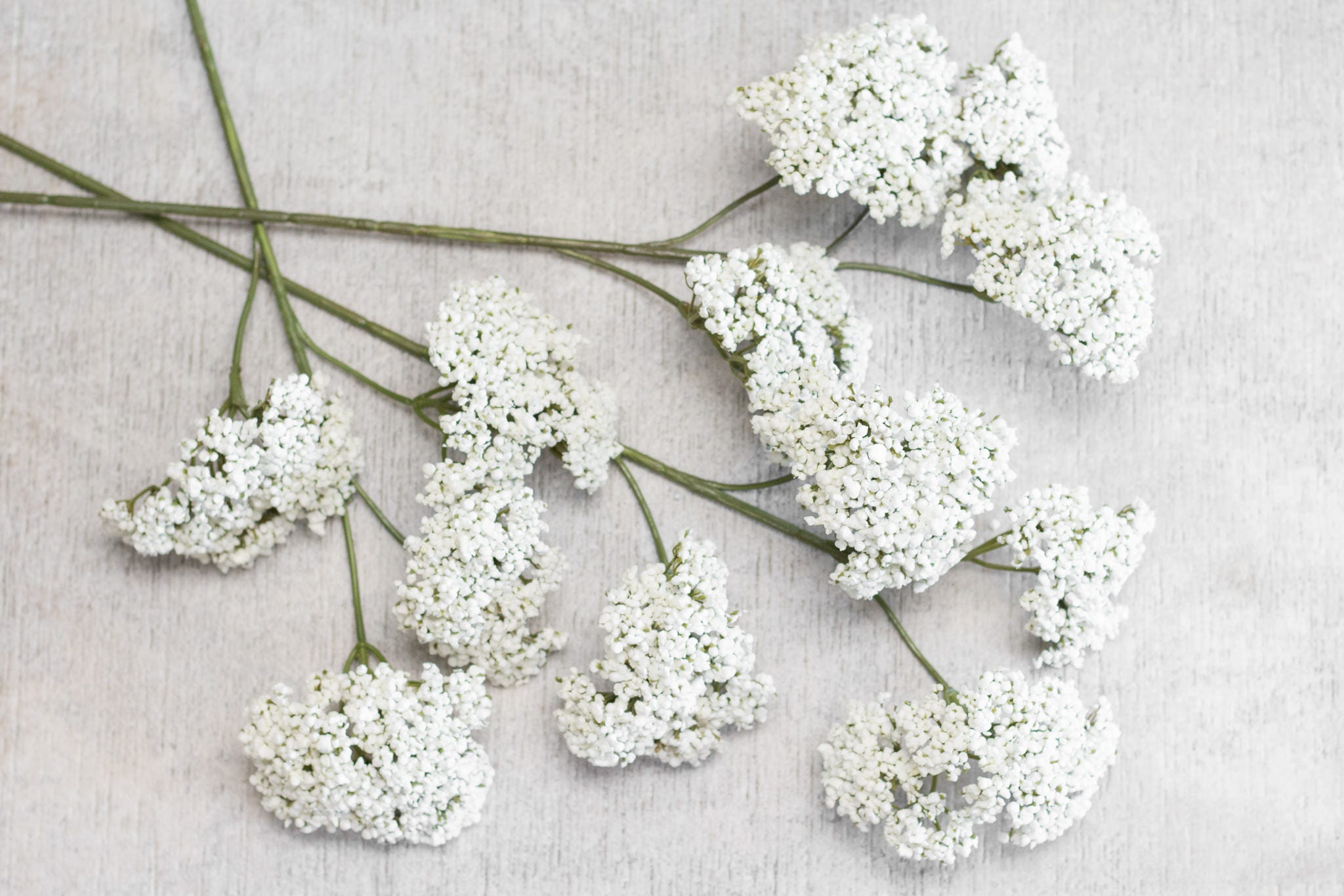 3/6/12 pcs 29.5 Rustic White Seed Cluster Spray Stem, 4 Heads ...