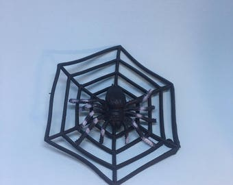 Spider and the Web Brooch