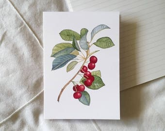 Red Berry Illustrated Greeting Card