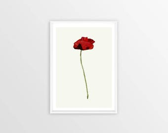 A4, poppy, Wall art, Decoration, Home decor, Print, Mural Art, botanical, watercolor, herbarium, hand drawn