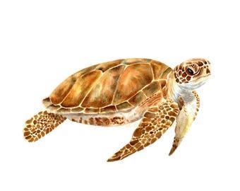 Turtle Print, Turtle Gift, Sea Life Print, Animal Print, Prints Wall Art, Art Prints, Pet Portrait, Ocean Print, Beach House Art