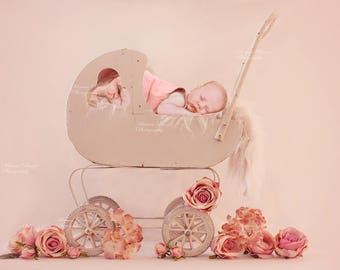 Digital Backdrop for new born girl and boy/Wooden baby carriage/baby stroller
