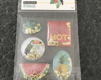 Scrap-booking Stickers Paper Craft Tropical Watermelon Pineapple Fruit Stickers Five (5)