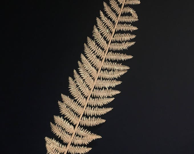Absolutely gorgeous white glitter fern stem