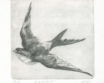 "engraving ""Swallow"""