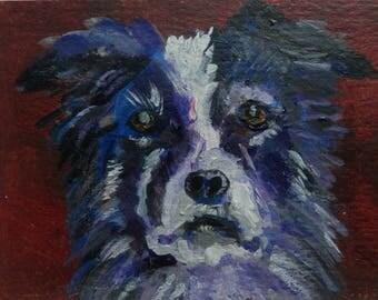ACEO Border Collie painting, original dog art, pet dog portrait, dog lover gift, miniature dog art, dog decor