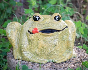 Rolly Polly Frog - Large