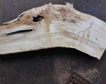"""Maple Slab Ideal for Coffee Table Top Etc Aprox  47"""" x 18"""" x  2.5"""""""