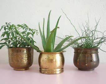 Set of Three Medium Brass Planters / Vintage Brass Planters / Medium Brass Succulent Planters / Brass Plant Pots / Instant Collection