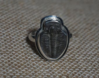 Sterling silver Trilobite fossil ring Free sizing