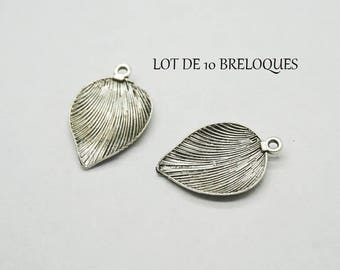 Set of 5 Silver feather (D15) leaf charms