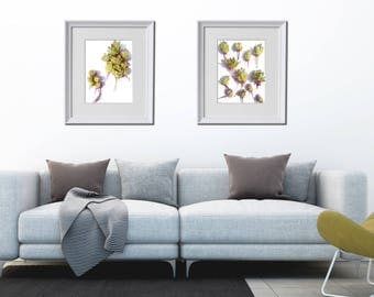 Modern Succulent Wall Decor, Succulent Instant Download, Set of 2 Succulent Prints, Modern Cactus Art, Succulents and cacti, Photo Decor Set