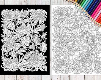 Botanical Coloring Pages 2 JPEG In A4 Format Chrysanthemum For Adults