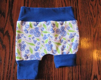 Short rolling cornflower blue with royal blue accent