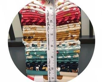 33 Fat Quarter Bundle - Woof Woof Meow Collection - Moda Fabrics