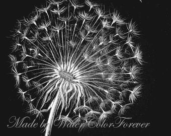 Original drawing, painting pastel, drawing pastel, drawing dandelion, dandelion art, gift, original painting, black and white drawing