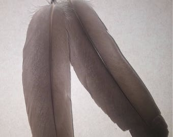 Authentic Native American feather earrings
