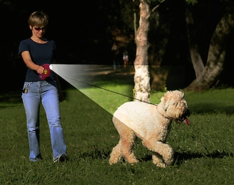 LED retractable leash with bags