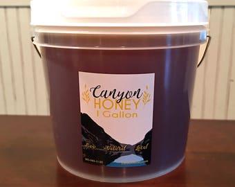 1 Gallon Bucket of Raw, Natural Utah Honey