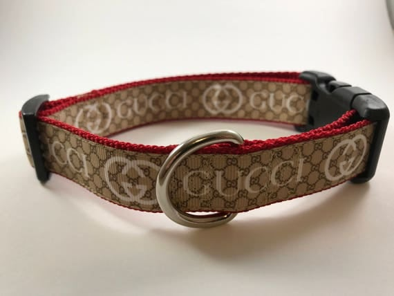 Gucci Inspired Dog Collar
