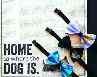 Bow tie for your four legged animal