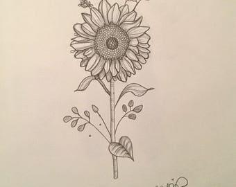 Sunflower drawing (print)