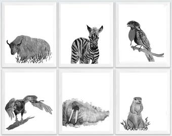 zoo animals, Cute animal prints, cute safari animals, cute animals nursery, baby animal pictures, set of 6 prints animals, set of 6 prints,