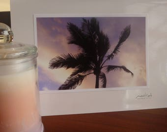 Palm with Purple Sky – Photo Card