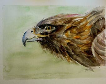 original watercolor painting the Eagle in flight