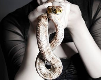 Hecate, Snake, Witch, Fine Art, Photography, Print
