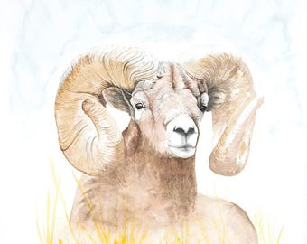 Golden Ram Original Watercolor Painting on Arches Paper