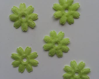lot de 5  fleurs vert anis en feutrine 25 mm