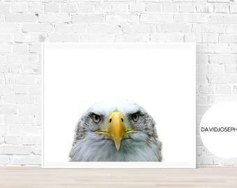 Bald Eagle Print, American Eagle Decor, Animal Photography, Minimalist, American Print, Digital Download, Bird Print, Bald Eagle Wall Art