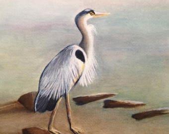 Momma Blue Heron