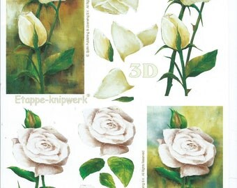 paper cut card 3D white roses flowers