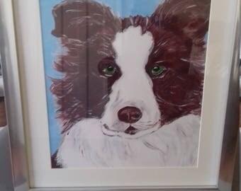 Pet painting Border Collie