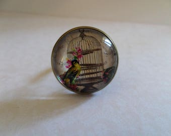 Cabochon glass * the bird cage * 20 mm