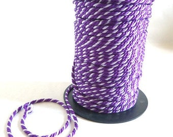 Two-tone purple twisted cord