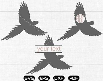 Parrot Svg, Parrot Clipart, Monogram Frame cricut, cameo, silhouette cut files commercial & personal use