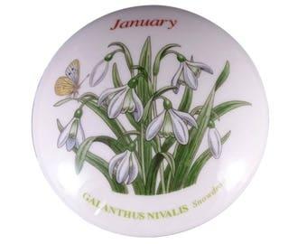 Botanic Garden January Snowdrop Trinket Box from Portmeirion