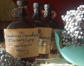 DIY/ or dont do it yourself Elderberry syrup