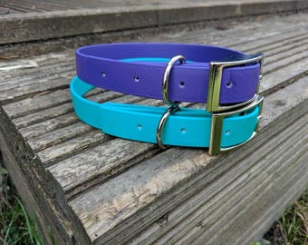 Weather proof dog collar