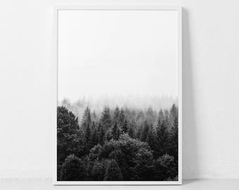 Forest Print, Forest Photography, Nature Prints, Black and White Forest, Forest Art, Woodland Prints, Nordic Wall Decor, Nature Photography.