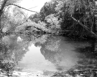 Black and White Photo of a Pond in Walnut Creek Park  // Photography near Austin, Texas // Nature, Tree, Forest, Water, Lake, Photograph