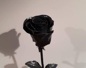 Metal Rose / Steel rose