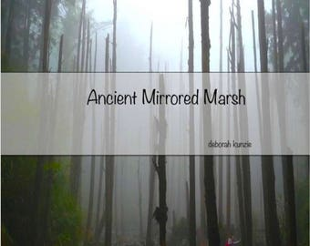 Ancient Mirrored Marsh - Poetry Book