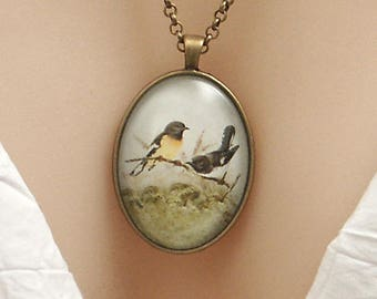New Zealand Tomtit birds, vintage art print, large oval Picture Pendant, 40x30mm, glass dome pendant, cameo